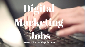 Digital Marketing jobs and training